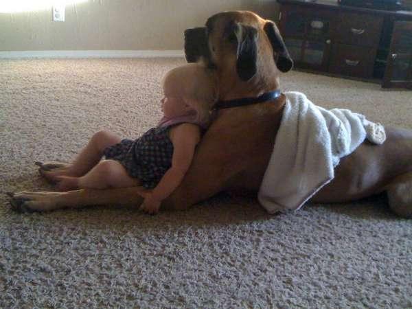 http://blog.weespring.com/25-adorable-photos-prove-babies-need-pets/