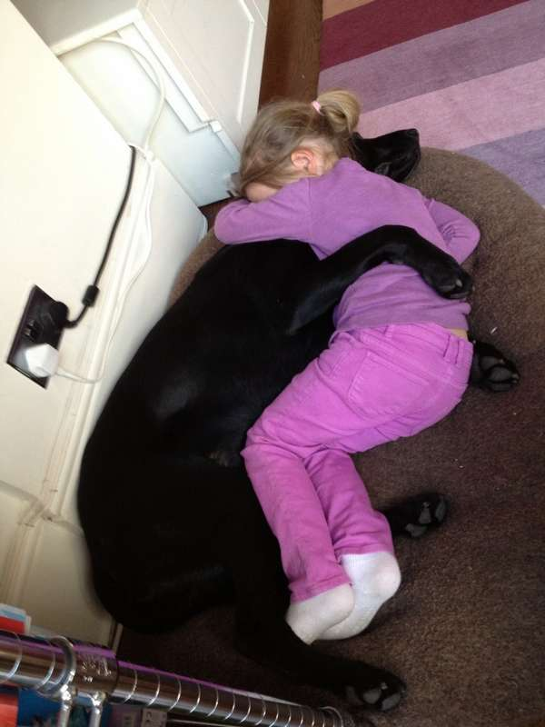http://www.huffingtonpost.com/2013/05/24/dogs-and-babies-sleeping_n_3332420.html