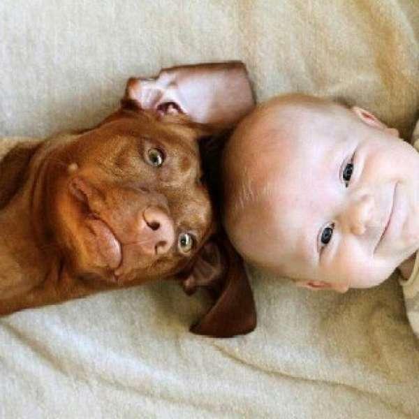 enfant-amitie-animaux (6)