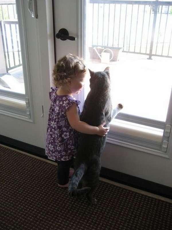 enfant-amitie-animaux (8)