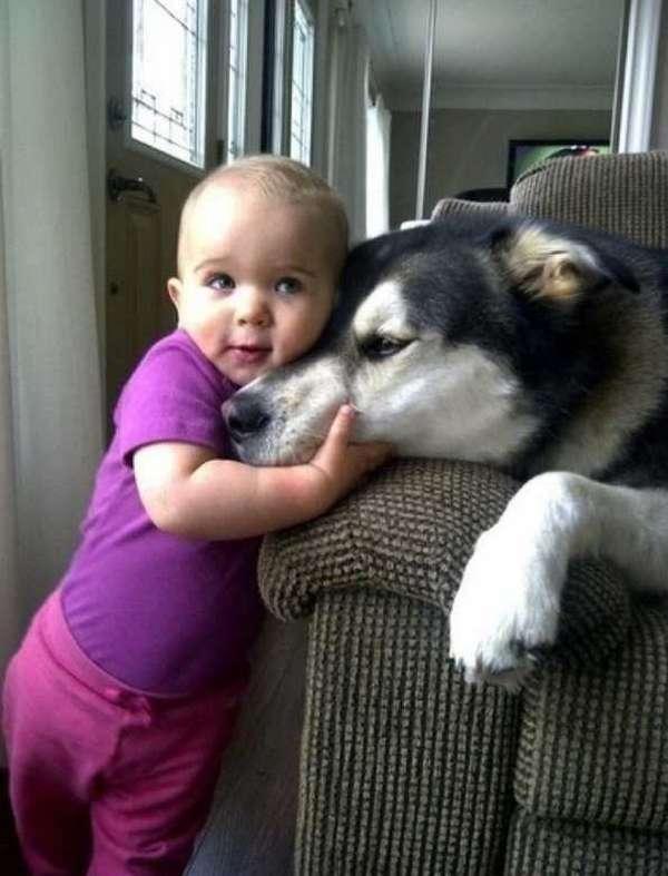 enfant-amitie-animaux