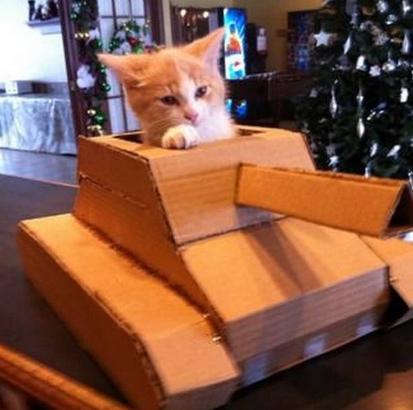 http://www.techhive.com/article/248823/your_kitteh_means_business_in_this_diy_cardboard_tank.html