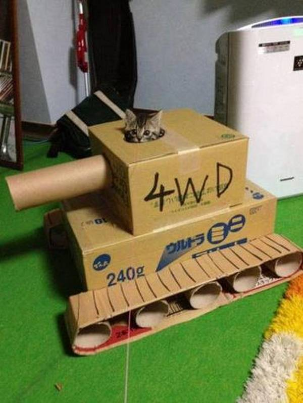 http://www.jokeroo.com/pictures/cats/1043519.html