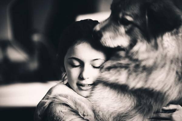 chiens-aiment-maitres (14)