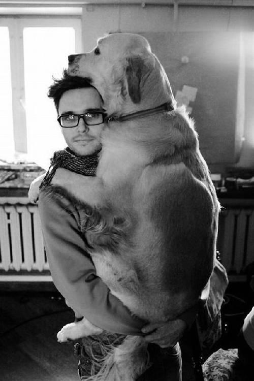 chiens-aiment-maitres (3)
