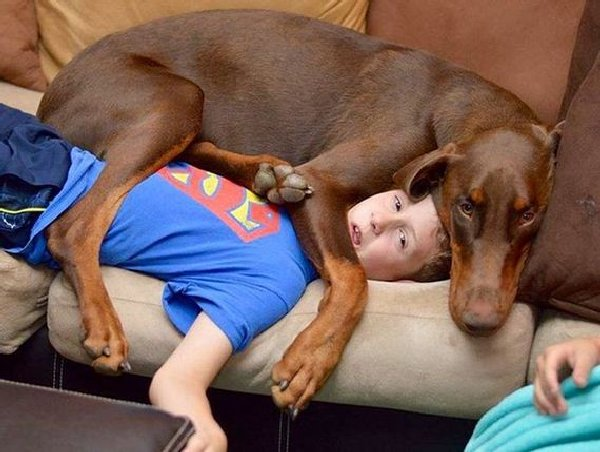 http://www.barnorama.com/wp-content/images/2015/02/dogs_violate_personal_space/05-dogs_violate_personal_space.jpg