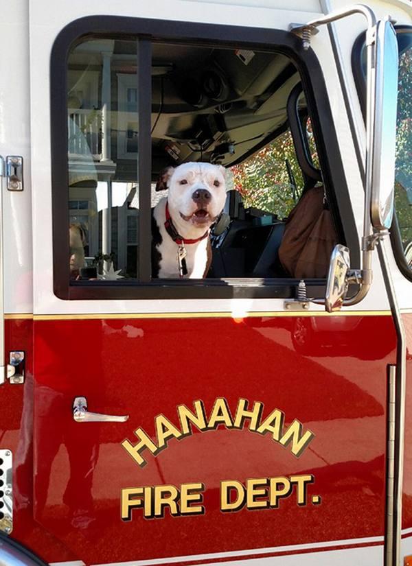 jake-incendie-pompier (3)