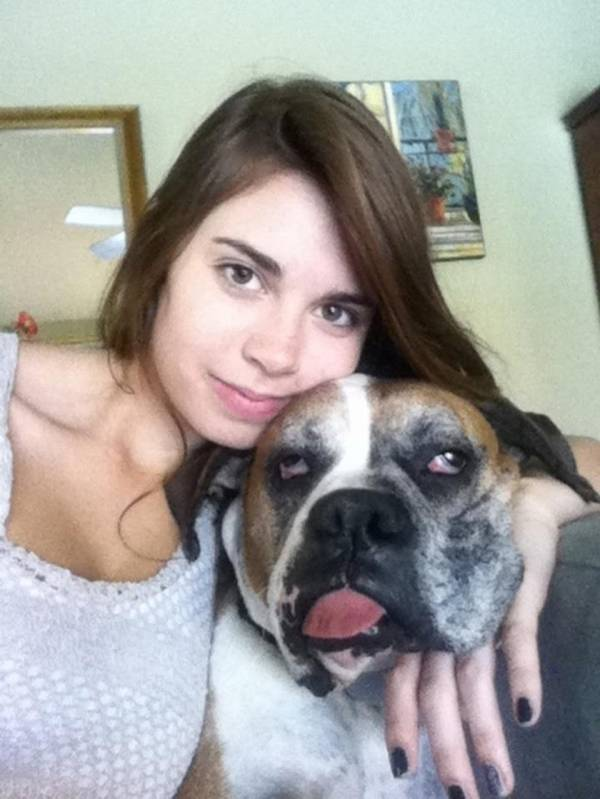 http://3milliondogs.com/dogbook/the-15-most-epic-dog-photobombs-of-all-time/