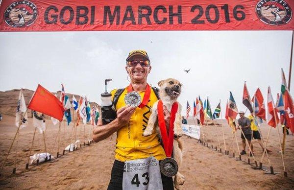 Chien-errant-marathon (7)