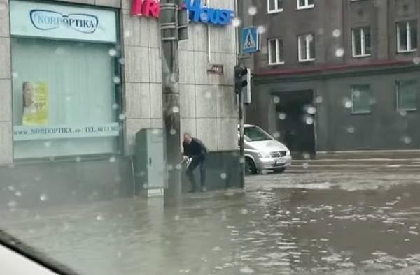 heros-sauve-chaton-innondation-tilk (2)