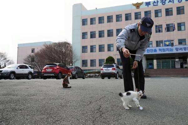 Facebook / Busan Police