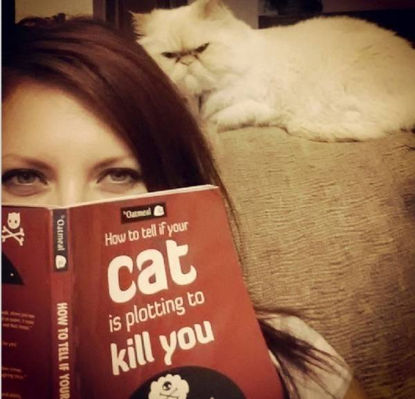 http://weknowmemes.com/2013/10/how-to-tell-if-your-cat-is-plotting-to-kill-you/