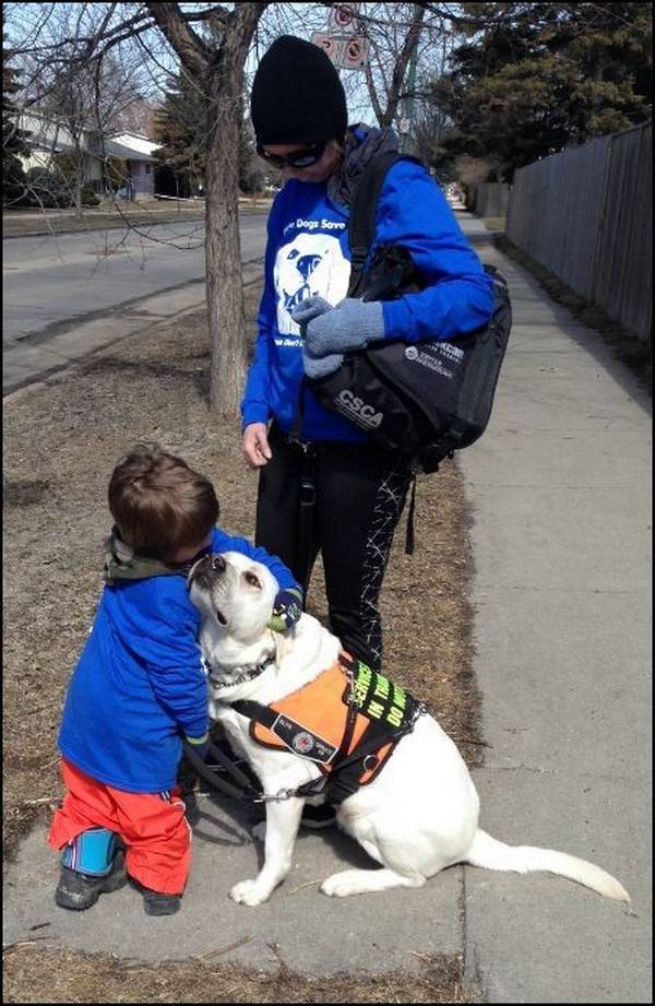 lego-tupper-autisme-chien-5