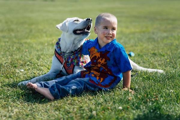 lego-tupper-autisme-chien-9