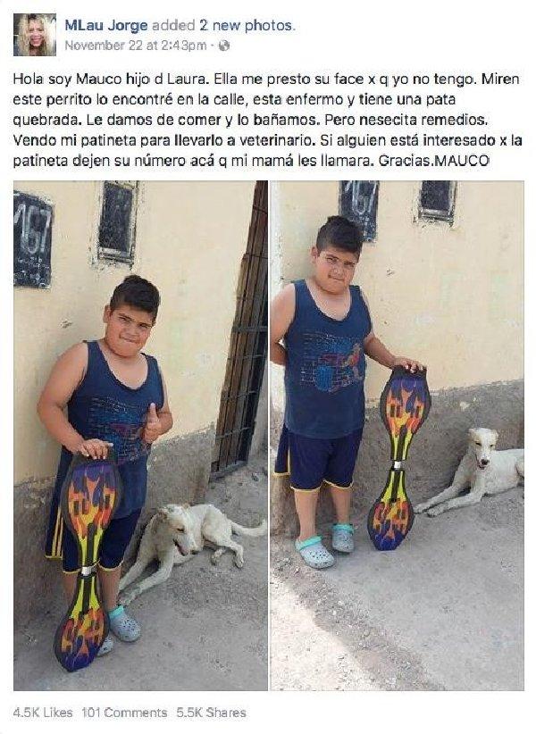 enfant-vend-jouet-pour-chien-2