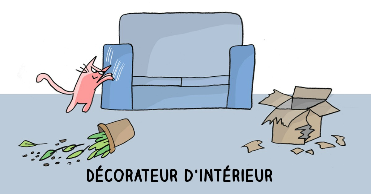 17 m tiers importants que font les chats animaaaaals for Metier decorateur interieur